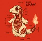 anatomy_thum_hitokage_01