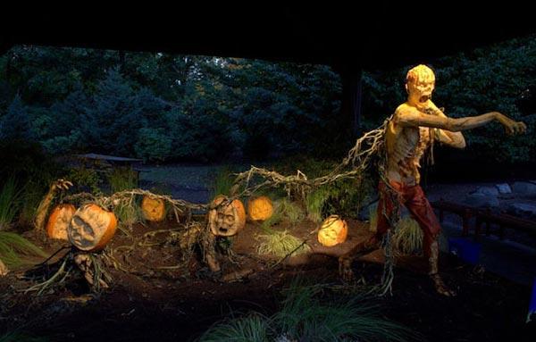 pumpkins_z10_01