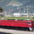 Photos: N ED72 その1