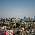 Photos: スカイツリーと、東京タワー