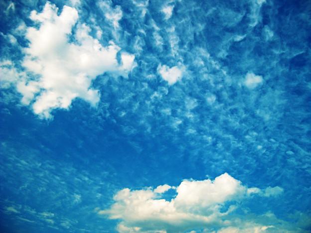 Photos: 雲11