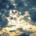 Photos: 雲14