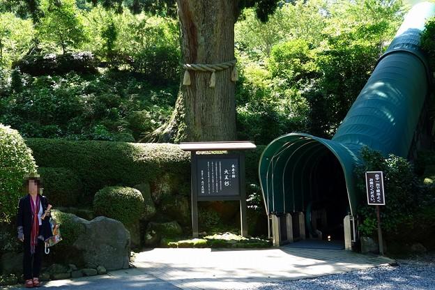 DSC00843箱根成川美術館
