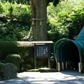 Photos: DSC00843箱根成川美術館