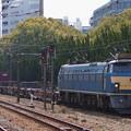 Photos: EF66-24(新大阪にて)