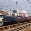Photos: EF66-24(東淀川にて)