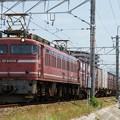 Photos: EF81-404(安威川にて)