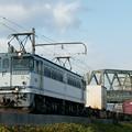 Photos: 5087レ【EF65-2036牽引】