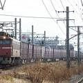 Photos: 3095レ【EF81-748牽引】