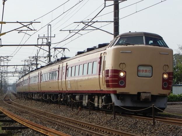 183系田町車 H81編成 集約臨時列車