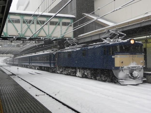 "EF60 19+12系5B+EF65 501 第3回カナロコ列車""急行「かながわ」"" 回送"