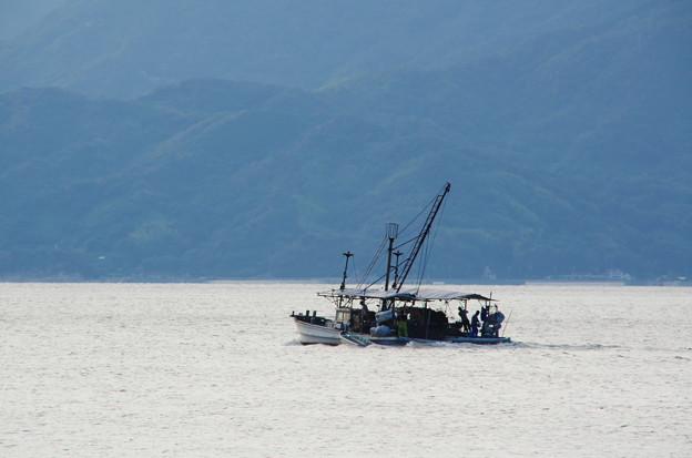 鰯網漁船が行く