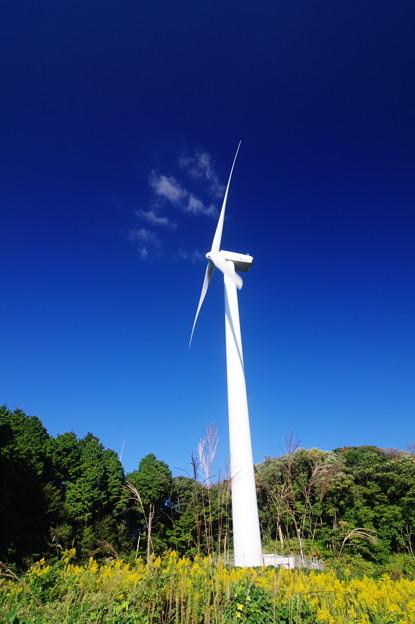 荒れ野の風車に秋の風
