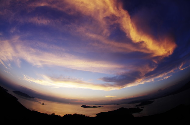 夕空の飛龍