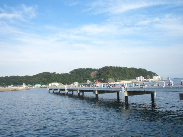 釣り 豊浜 公園 海