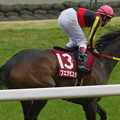Photos: 京都記念 ブエナビスタ 返し馬