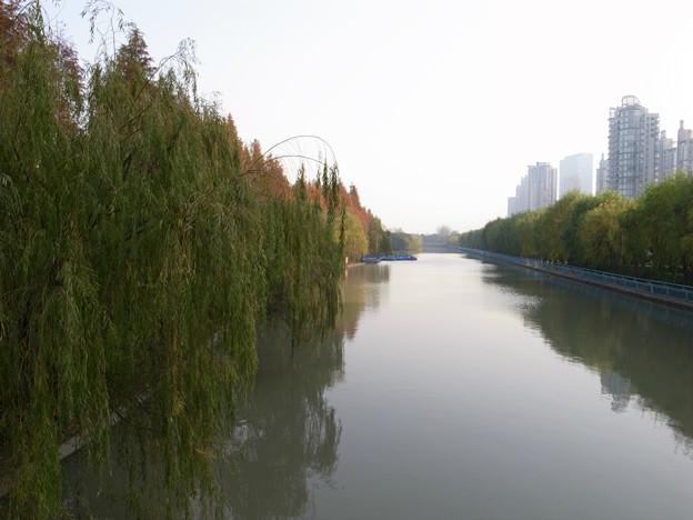 上海 世紀公園