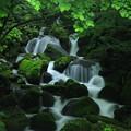水涼(鳥取県 雨滝渓谷)