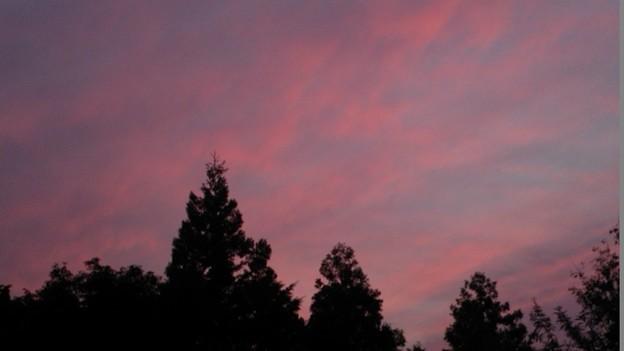 「昨日の・・夕焼け雲・・」 です・・・・