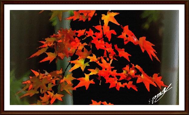 「紅葉の・・絵画風アレンジ・・」 です・・・