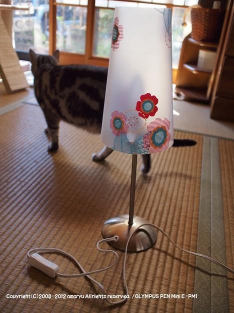 電気の傘DIY 283