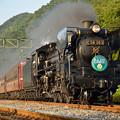 Photos: パレオエクスプレス 鉄道の日 ヘッドマーク付き
