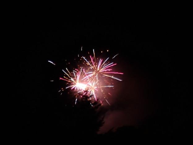 北竜町 ひまわり畑の花火大会