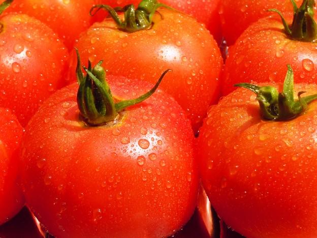 本日の収穫:桃太郎9個デルモンテ3個♪
