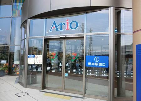 ario hashimoto-240728-7
