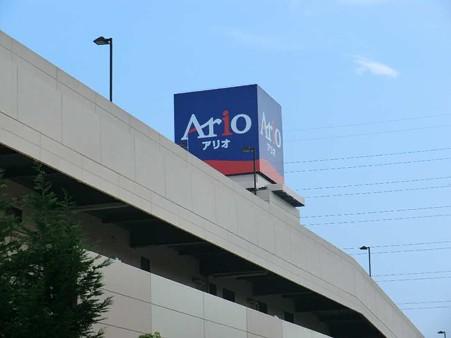 ario hashimoto-240728-4