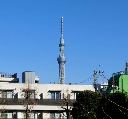 tokyoskytree-241217-3