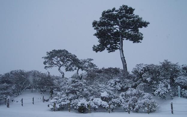 023d2_20140208雪の公園(2)