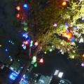 Photos: R0011666.JPG