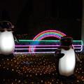 Photos: suicaペンギン