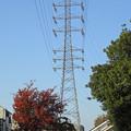 写真: 川世線54号鉄塔