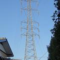 写真: 川世線55号鉄塔