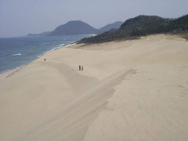 砂丘の稜線