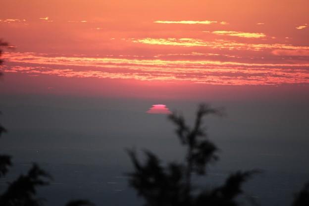 富幕山へ今年☆トミー5回登頂