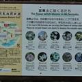 Photos: 富幕山に咲く花たち・・