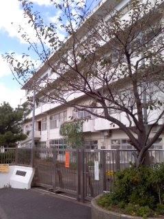 鎌倉市立富士塚小学校。
