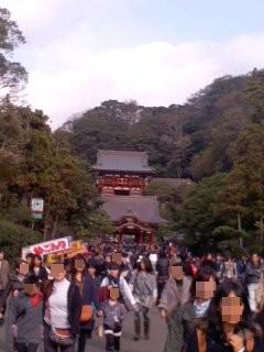 鶴岡八幡宮 境内。