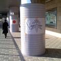 写真: 日の丸と笹竜胆(鎌倉市旗)。