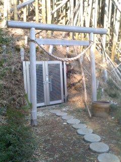 写真: 見つけたやぐら(鎌倉市岡本)。