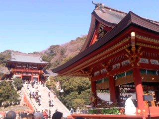 鶴岡八幡宮(3月11日)