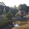 日本庭園 C01419