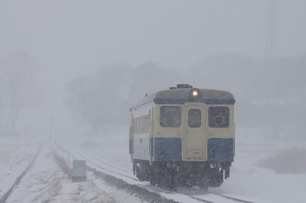 写真: 20年ぶりの大雪も、雪国育ちのキハ222には懐かしい風景だったに違いない@ひたちなか海浜鉄道湊線 金上-中根 2014/02/08