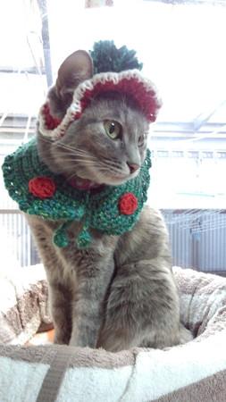 クリスマス仕様ハットとマント