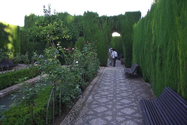 Photos: グラナダ:ヘネラリーフェ庭園