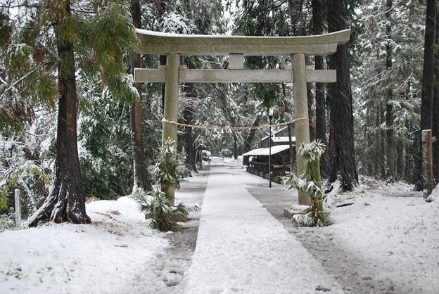 DSC_雪の王子神社s0001