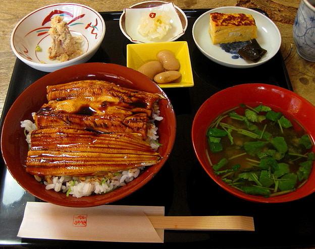 鎌倉 左可井の穴子丼